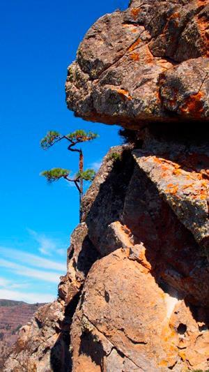 La vía de la escalada al Roque Agando. Foto: Sebastián Álvaro